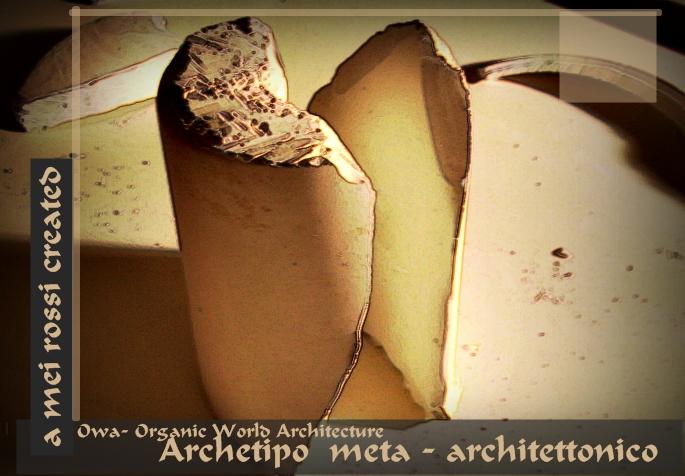 studi di architettura scultura arredamento alberto mei rossi organic world architecture