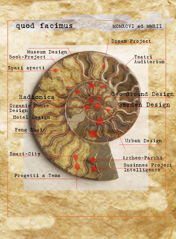 studi di architettura spirale locaritmica equiangola